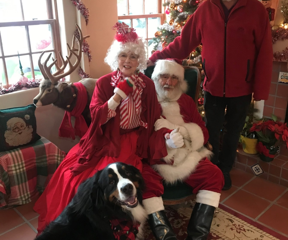 char, mrs claus, santa, and david